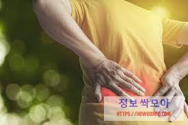 허리 통증 증상