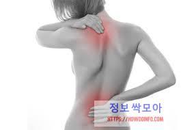 등 통증이 의심되는병 2